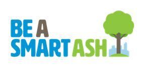 Be a Smart Ash Logo